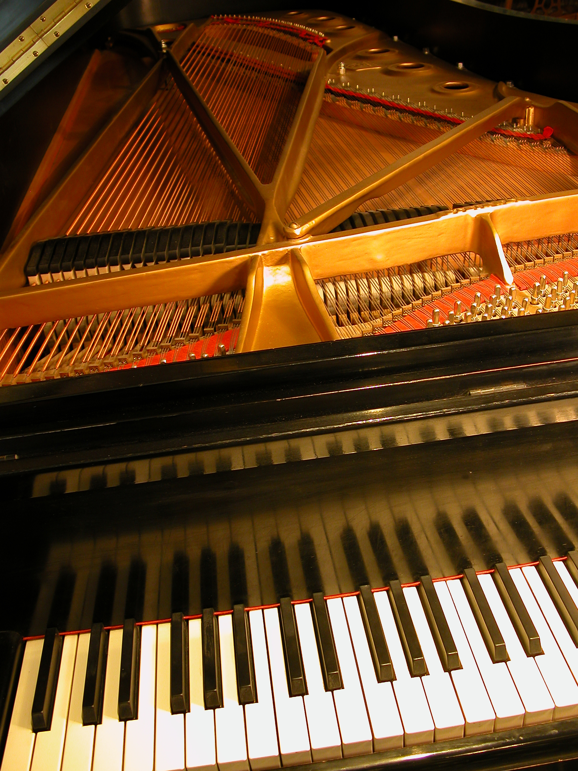 a look at the history of the piano What made you want to look up piano a brief history of 'potshot' duck, or you might be dinner what is a 'thirst trap' a tall drink of water ask the editors.